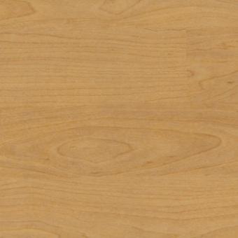 Спортивное покрытие Gerflor Taraflex Multi-Use 6.2 4331 Wood Natural