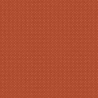 Ковролин BIG Carus Style and Elegance SE 011-21205