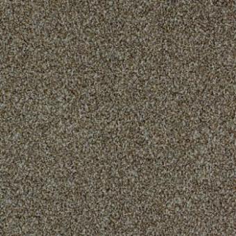 Ковровая плитка Desso Torso 9094