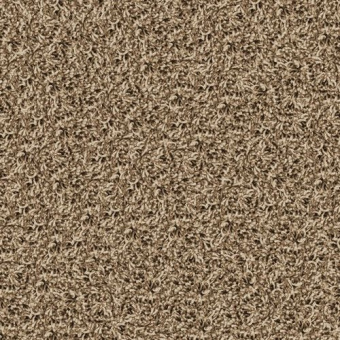Ковровая плитка Desso Twist 1660