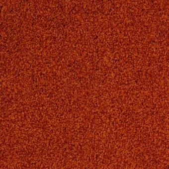 Ковровая плитка Desso Torso 5103