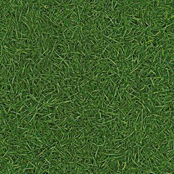 Линолеум IVC Bingo Grass 25