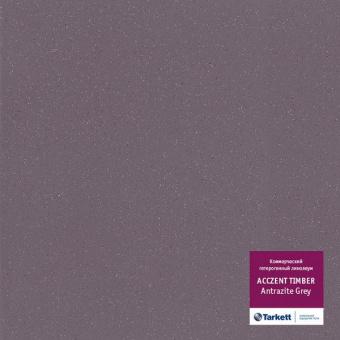 Линолеум Tarkett Acczent Universal Antrazite Grey