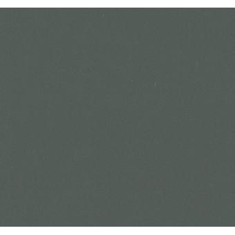 Натуральный линолеум Forbo Marmoleum Walton Uni 173