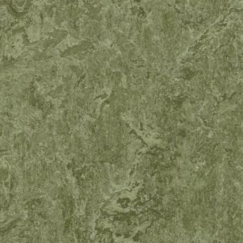 Натуральный линолеум Forbo Marmoleum Real 3255