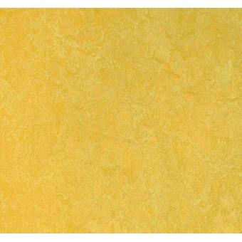 Натуральный линолеум Forbo Marmoleum Click 753877