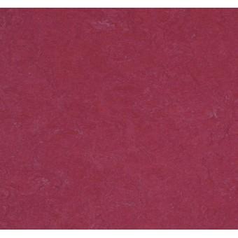 Натуральный линолеум Forbo Marmoleum Click 753879