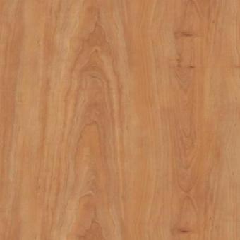 Виниловая плитка Amtico Spacia Wood SS5W2525