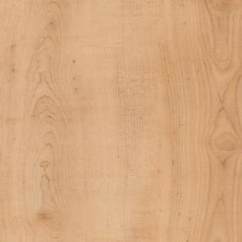 Виниловая плитка Amtico First Wood SF3W2502