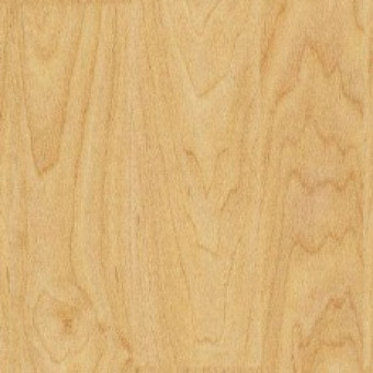 Спортивное покрытие Gerflor Sport M Evolution 6381 Wood - Maple design